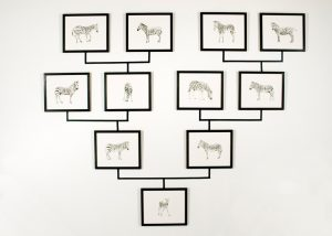 Julie Comnick Art - Untitled (zebra genealogy tree