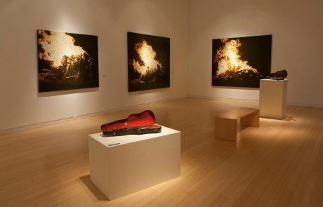 Julie Comnick Art | Mesa Contemporary Arts Museum, Mesa, AZ I
