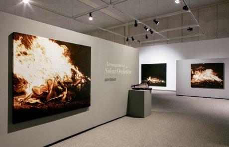 Julie Comnick Art | Coconino Center for the Arts, Flagstaff, AZ I