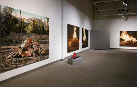 Julie Comnick Art | Coconino Center for the Arts, Flagstaff, AZ II